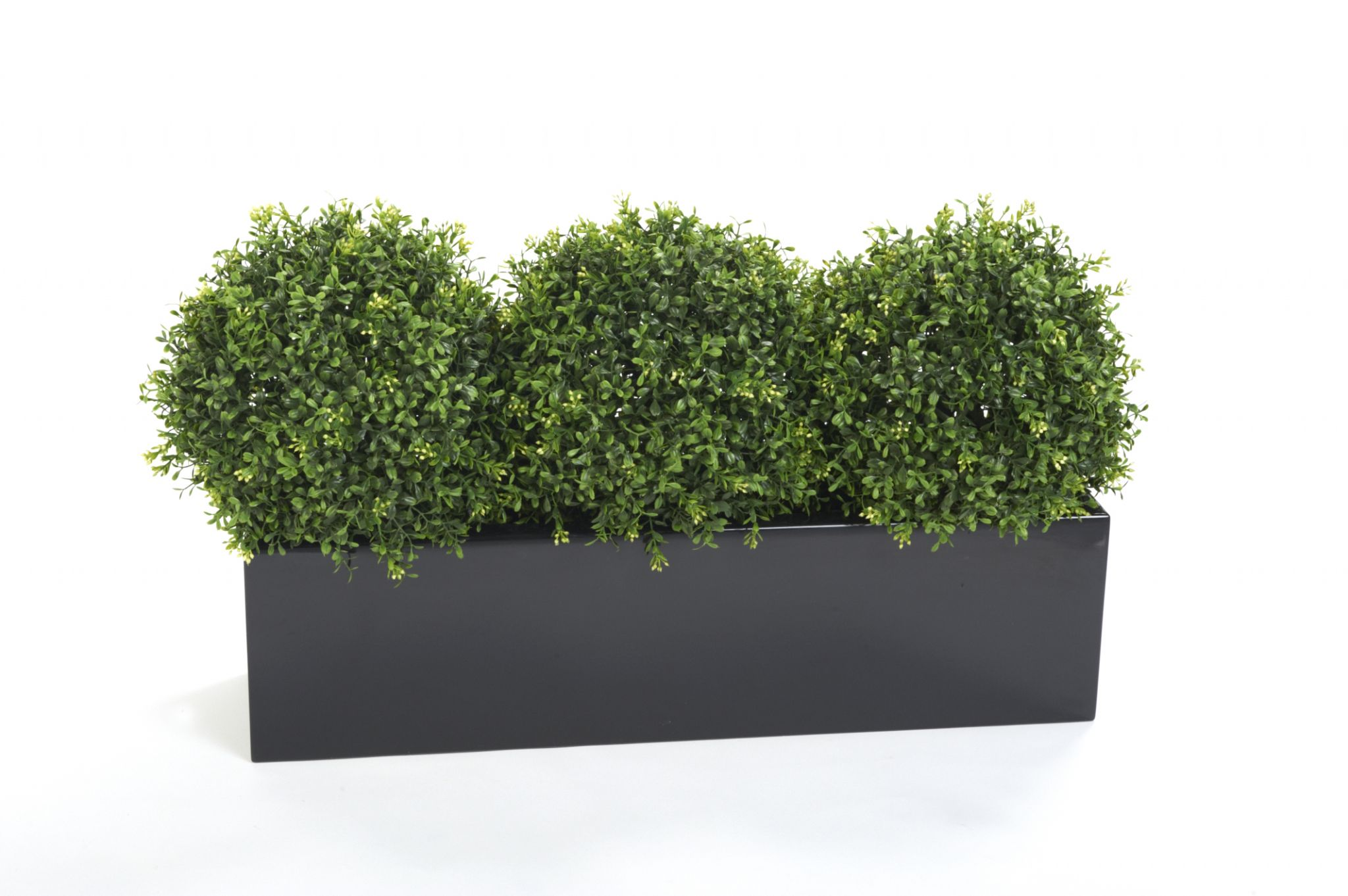 window box with artificial box plants. Black Bedroom Furniture Sets. Home Design Ideas